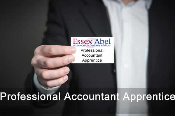 Professional Accountant Apprentice vacancy